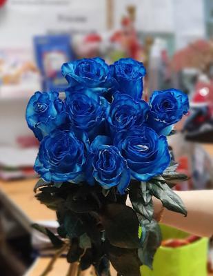 Роза Эквадор синяя - 9 роз