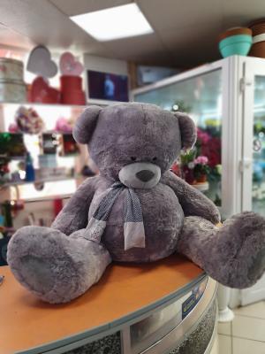 Большой Теди